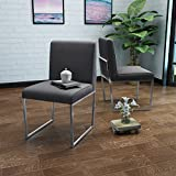 Delores Modern Charcoal Fabric Dining Chair with Chrome Finished Iron Legs