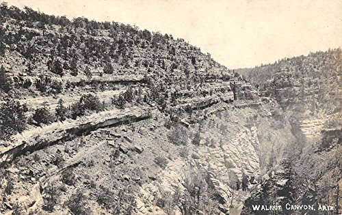 Walnut Canyon Arizona Scenic View Real Photo Antique Postcard K79618 (Arizona Antique Walnut)