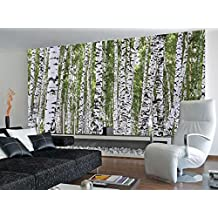 Forest of Birch Trees Huge Wall Mural Art Print Poster - 99x164