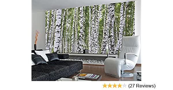 1d6af65f6579 Amazon.com  (99x164) Forest of Birch Trees Huge Wall Mural  Home   Kitchen