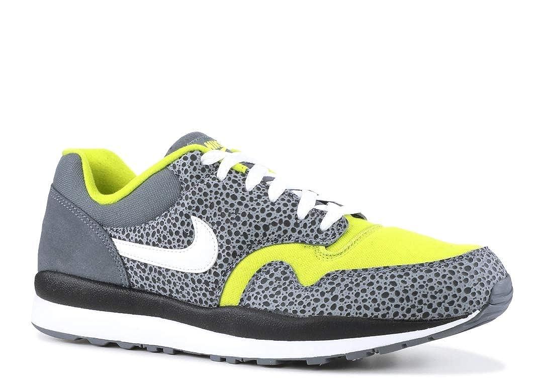 MultiCouleure (Flint gris blanc Bright Cactus noir 001) Nike Air Safari Se, Chaussures de Running Compétition Homme 45.5 EU