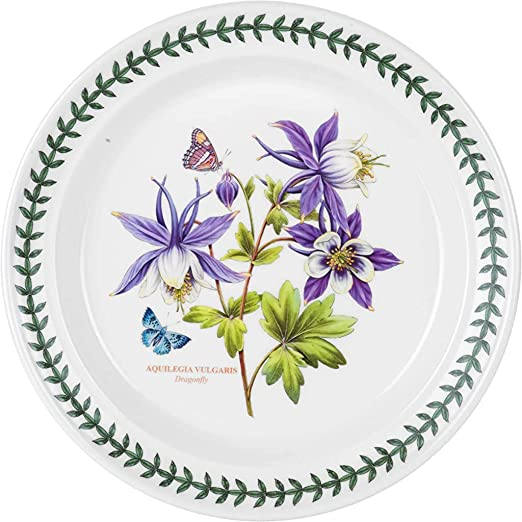 Amazon Com Portmeirion Exotic Botanic Garden Dinner Plate Set With 6 Assorted Motifs Dinner Plates