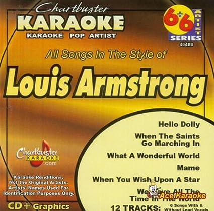 Amazon com: Chartbuster Karaoke 6X6 CDG CB40480 - Louis