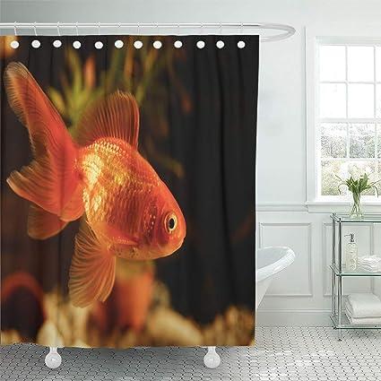 Amazon Emvency Shower Curtain Green Animal Goldfish In Aquarium