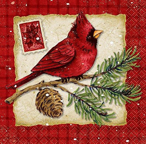 Cardinal Christmas Beverage Napkins, 16ct (Eggnog Drinks Christmas)