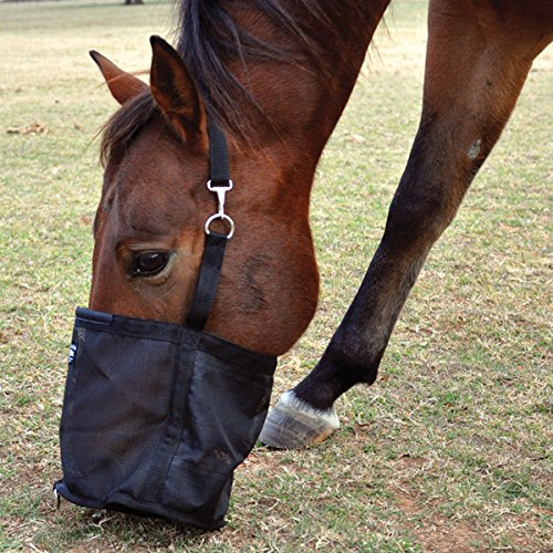 Cashel Feed Rite Bag – Size: Horse