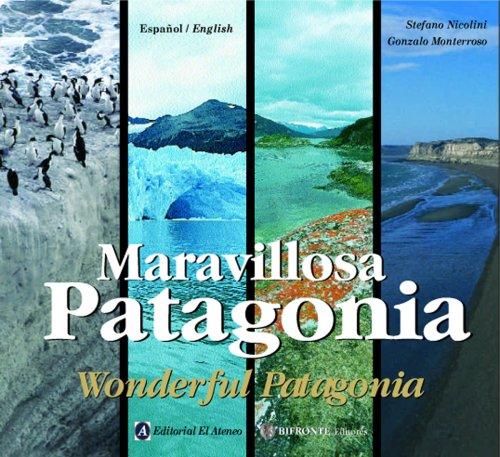 Descargar Libro Maravillosa Patagonia/ Wonderful Patagonia Gonzalo Monterroso