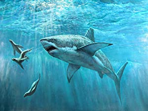 Diamond Painting 5D DIY Art Painting Adult Press Digital Painting kit Crafts Suitable for Home Wall Decoration Submarine Shark 30x25cm