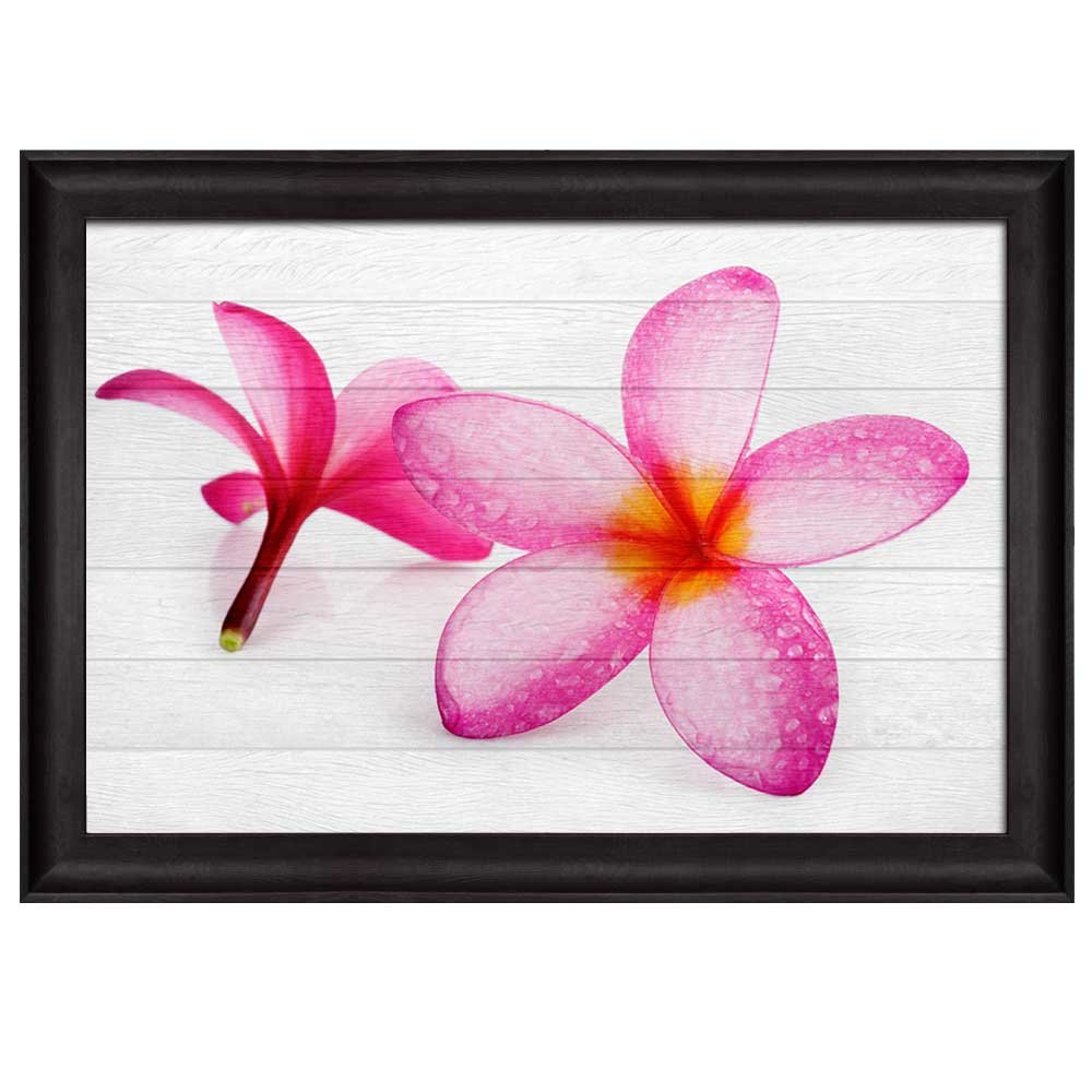 Pink Hawaiian Plumeria Flower Over White Wooden Panels Nature Framed