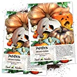 Seed Needs, Spooky Pumpkin Mixture (Cucurbita Pepo/Maxima) Twin Pack of 50 Seeds Each Non-GMO