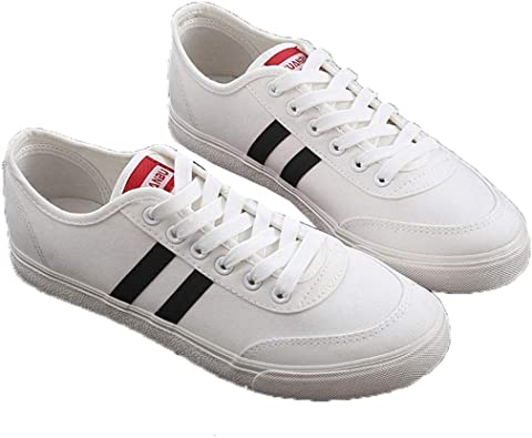 Zapatos Casuales para Hombres Zapatos de Lona para Caminar