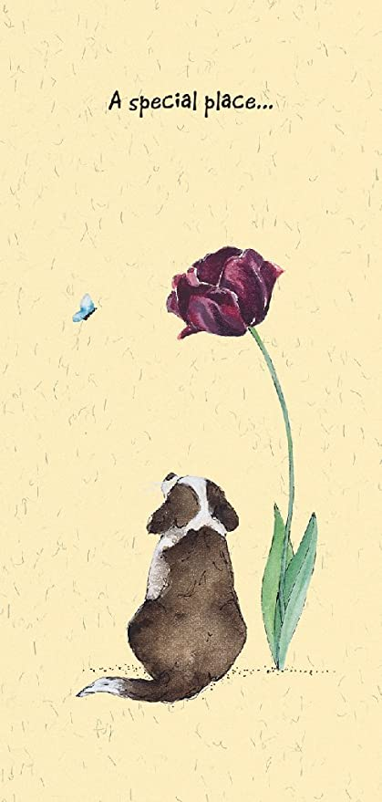 Pet Condolence Sympathy Card On The Loss Of Your Pet Dog Amazon
