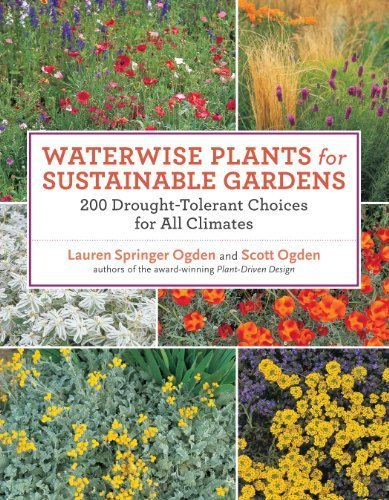 Waterwise Plants for Sustainable Gardens: 200 Drought-Tolerant Choices for all Climates by Ogden, Scott, Springer Ogden, Lauren (2011) Paperback