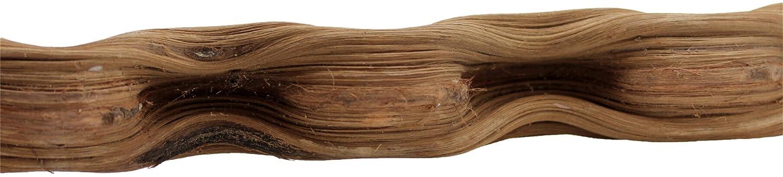REPTILES PLANET Liane naturelle pour terrarium reptiles Curly Vine longeur 80-120 cm diamètre 4-6 cm REPU5