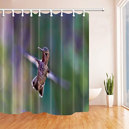 HiSoho Bird Decor, Hummingbird Shower Curtains, Mildew Resistant Polyester  Fabric Bathroom Decorations, Shower