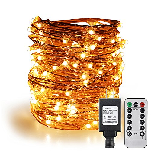 ErChen Remote Control Adapter Powered Led String Lights, 100FT 300 LEDs Dimmable Silver Copper Wire Decorative Fairy Lights with 8 Modes and Timer for Indoor, Outdoor, Christmas (Warm White)