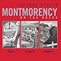 Montmorency on the Rocks Audiobook by Eleanor Updale Narrated by Stephen Fry