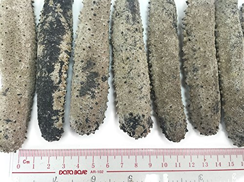 Dried Seafood Dried Japanese Okiko Sea Cucumber 日本沖子參 300g 10.58oz Free Worldwide Airmail by Grand Gift