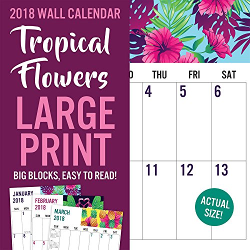 Avalon 2018 Floral Large Print Wall Calendar, 16 Months, 12 x 12 inches(82398)