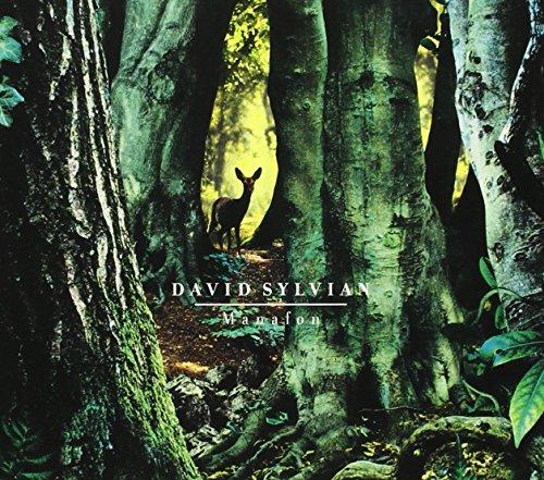 David Sylvian - Manafon (2009) [FLAC] Download