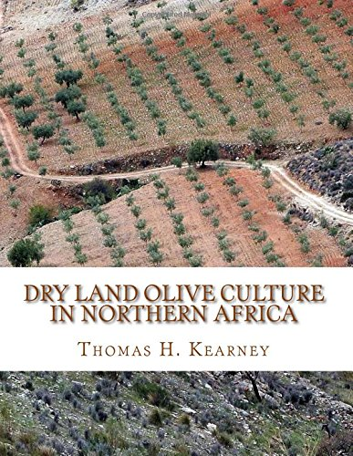 Read Online Dry Land Olive Culture In Northern Africa PDF