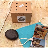 Rock Pet Kit with Adoption Certificate