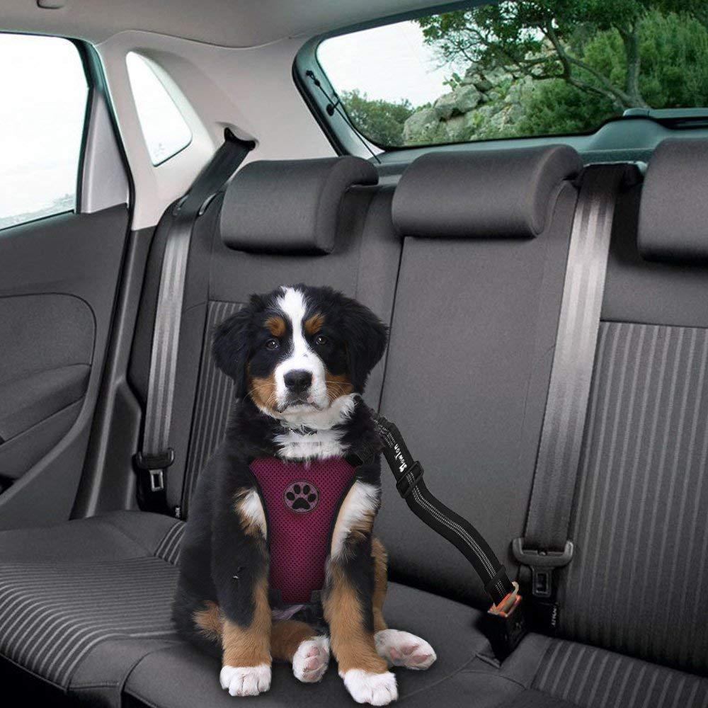 Lukovee Hundegeschirr Einstellbar Hundegeschirr mit Sicherheitsgurt luftdurchl/ässiges Latex-Gittergewebe Geschirr Reisenweste Autosicherheitsgurt f/ür Sicherheitsgeschirr Kleine Mittlere Hunde