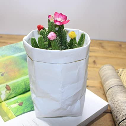Amazon liping washable kraft paper bag plant flowers pots liping washable kraft paper bag plant flowers pots multifunction clothing blankets closets bedrooms mightylinksfo
