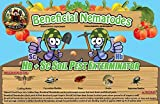 250 Million Live Beneficial Nematodes Hb & Sc - Kills Over 200 Different Species of Soil Dwelling and Wood Boring Insects.