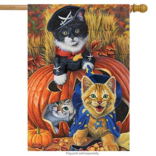(Briarwood Lane Halloween Kittens House Flag Jack O'Lantern Pirate 28