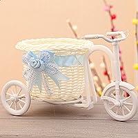 GEZICHTA Jarrón de flores, ratán, cesta para bicicleta