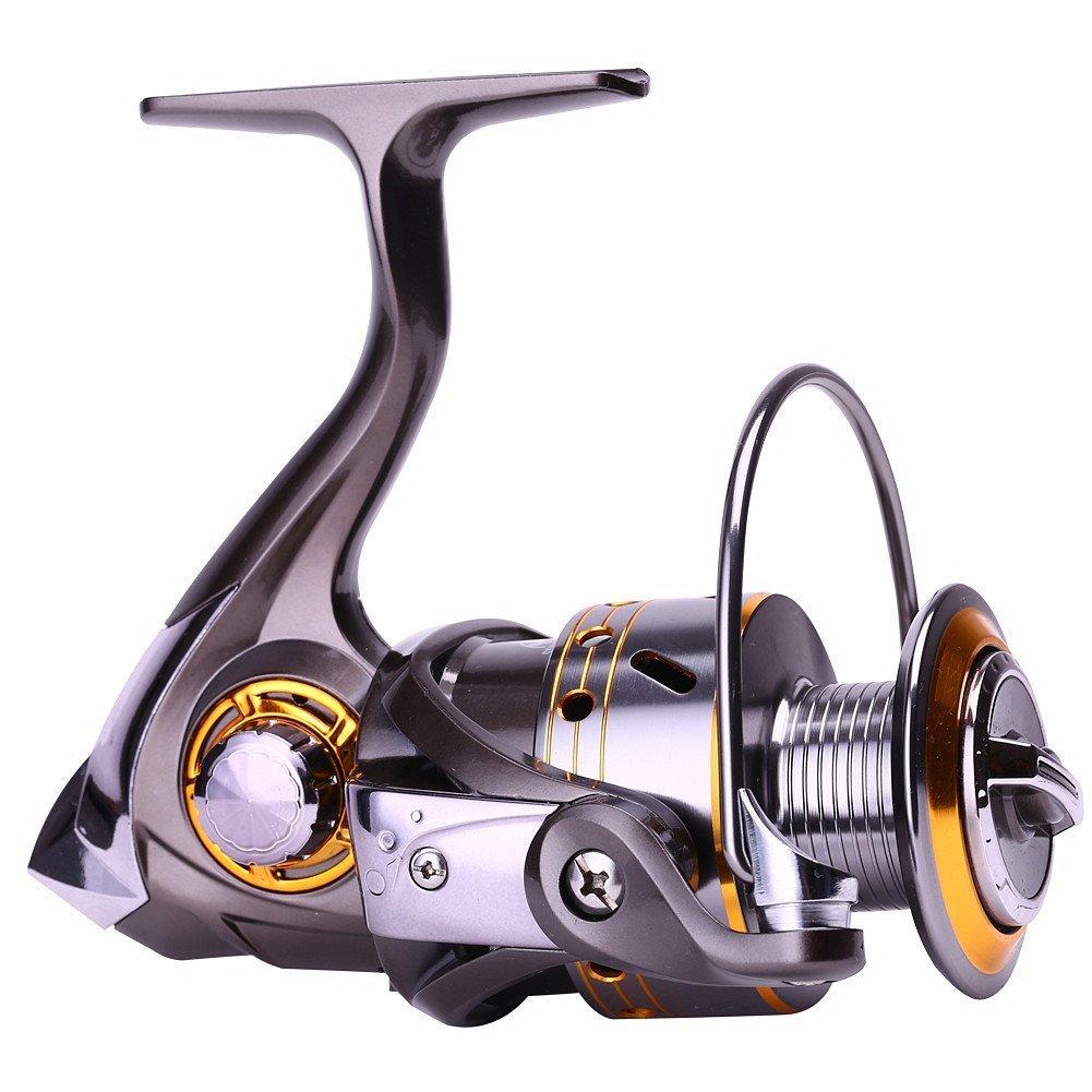 釣りリール12 + 1玉軸受、定格の海水と淡水釣りと左右交換可能CNC折りたたみ式ハンドル DK5000  B077V71ZM3