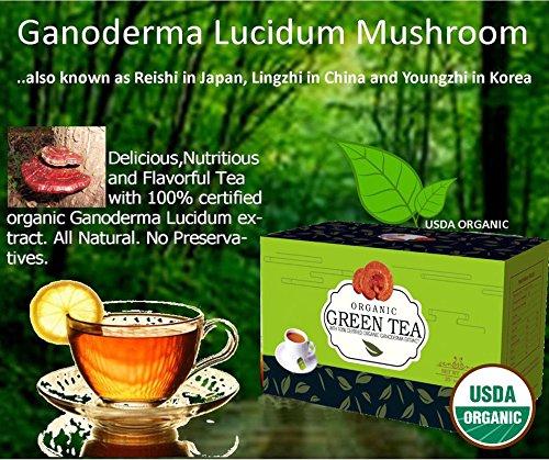 Organic Green Tea With 100% Certified Ganoderma Extract Seal