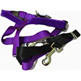 """2 Hounds Design PK 58MD PR Freedom No-Pull Dog Harness with Leash, (5/8"""" Wide), Purple, Medium"""