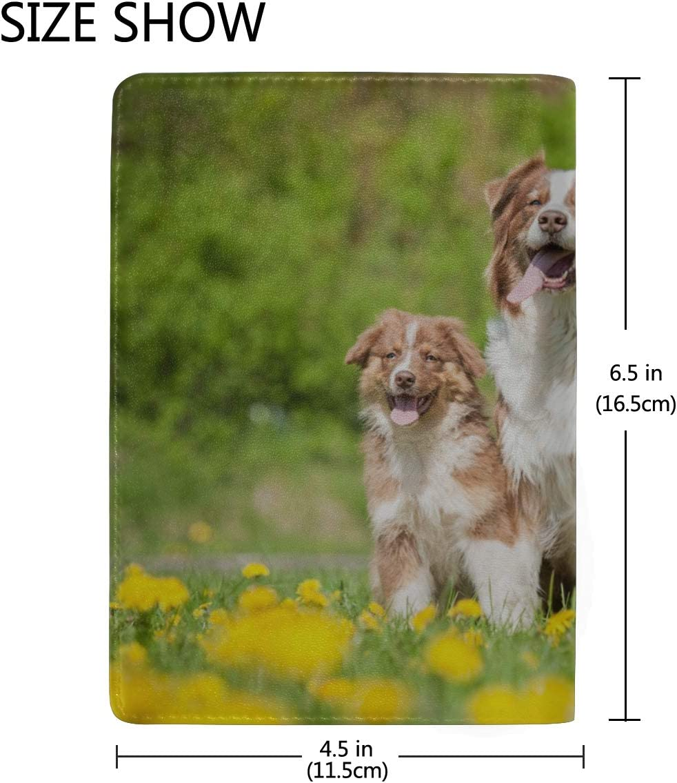 Three Cute Dogs Lying In A Dandelion Meadow Blocking Print Passport Holder Cover Case Travel Luggage Passport Wallet Card Holder Made With Leather For Men Women Kids Family