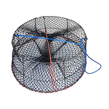 Image of Bait Traps Ladner Traps 30-Inch Stainless Steel Shrimp Trap
