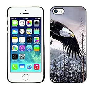 All Phone Most Case / Hard PC Metal piece Shell Slim Cover Protective Case for Apple Iphone 5 / 5S Bald Eagle American Alaska Wilderness