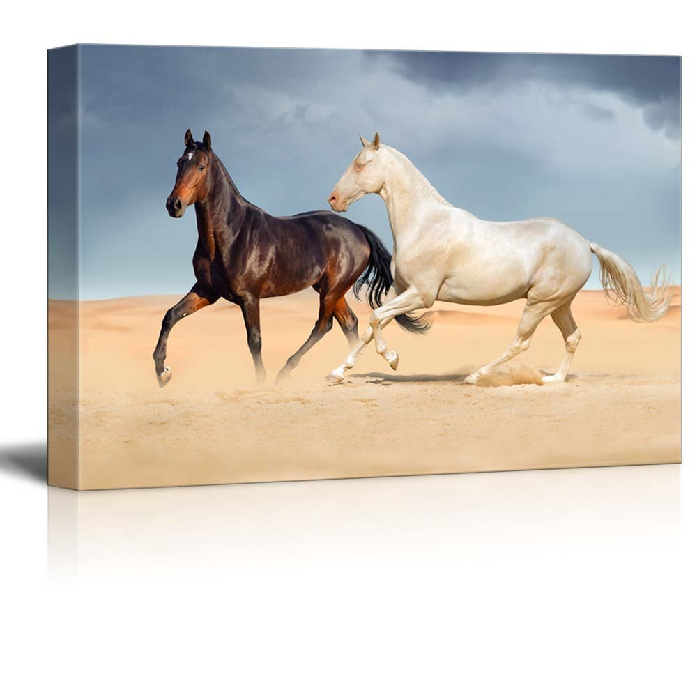 A White Horse and a Black Horse Running on Desert Against Beautiful ...