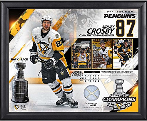 Sidney Crosby Pittsburgh Penguins 2017 Stanley Cup Champions Framed 16