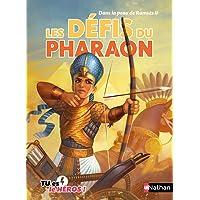 Les défis du pharaon - Livre dont tu es le héros - Dès 8 ans (7)