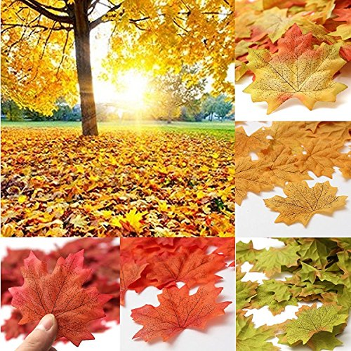 SunAngel Fall Artificial Maple Leaves - Assorted Colors for Halloween, Fall Weddings & Autumn Parties Decoration -