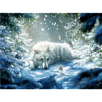 XDXART DIY Pintura al óleo Pintura guiada por número Kit para niños Adultos Principiantes 16 x 20 Pulgadas - Lobo Blanco en la Nieve, Dibujar con Pincel Navidad decoración decoración Regalos: Juguetes y juegos