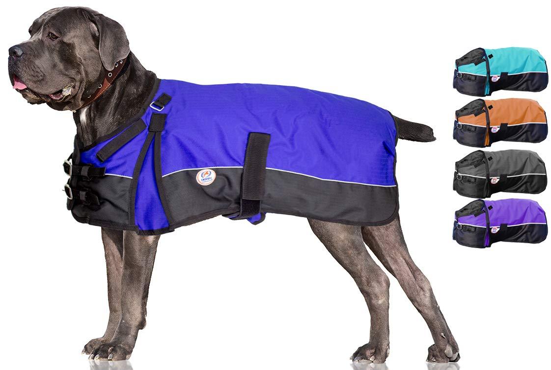 Royal bluee (Reflective Trim) 28.5\ Royal bluee (Reflective Trim) 28.5\ Derby Originals Mediumweight 150g Polyfil 600D Waterproof Ripstop Dog Coat with Reflective Trim (bluee, 28.5 )