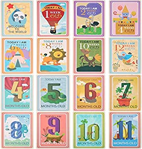 Giveaway: 36 Sheet Milestone Photo Sharing Cards Gift Set Baby Age...