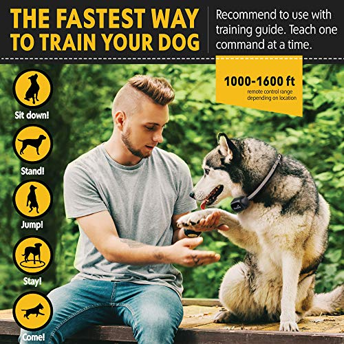 Pawious Dog Training Collar [Newest 2019] - Rechargeable Remote Dog Shock Collar Small Medium Large Dogs - Long Range, Waterproof, Large LED Screen, Beep, Vibration, Shock E-Collar by Pawious (Image #3)