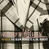 Halfway to Heaven: the Best of the Blow Monkeys &