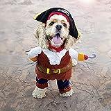 Pawz Road Halloween Pirates of the Caribbean Pet Costume