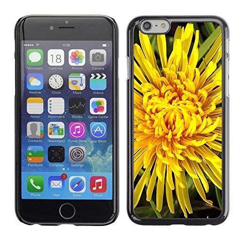 """Premio Sottile Slim Cassa Custodia Case Cover Shell // F00004112 une fleur // Apple iPhone 6 6S 6G 4.7"""""""