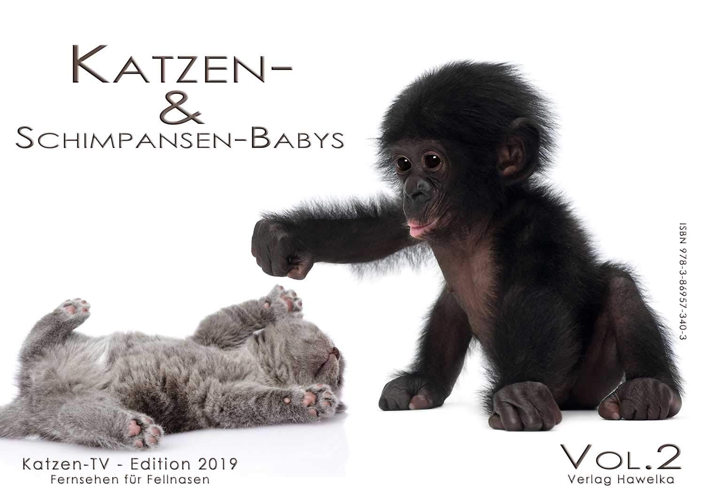 Katzen- & Schimpansen Babys - Wandkalender 2019 - Vol.2 - DIN A4