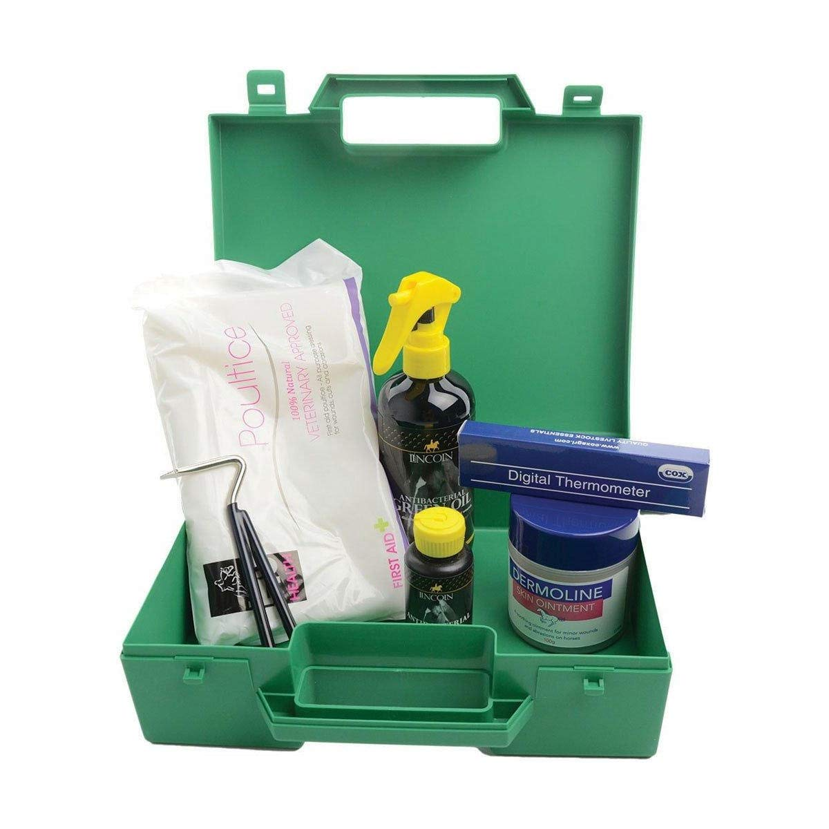 Green One Size Green One Size Lincoln First Aid Kit (One Size) (Green)